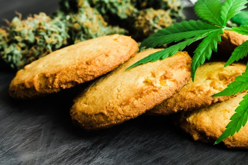 Look At The Major Types Of The CBD Edibles!